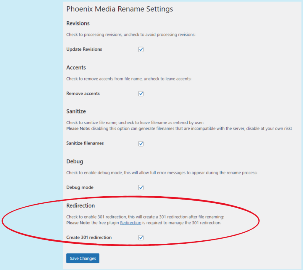 Phoenix Media Rename settings page: setting for redirections