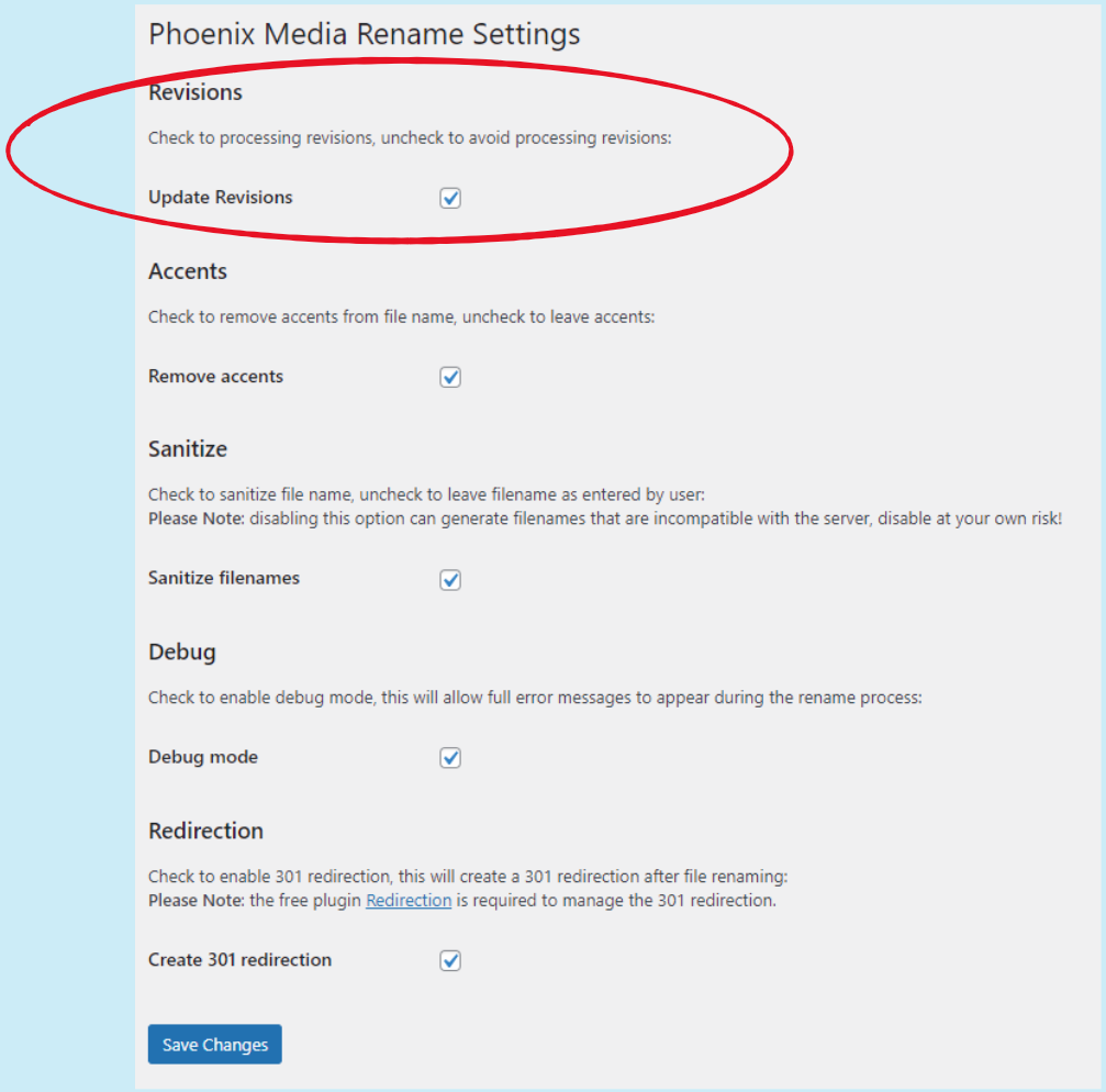 Phoenix Media Rename settings page: setting for revisions processing