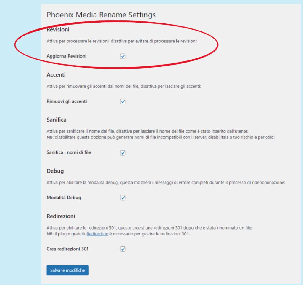 la pagina delle impostazioni di Phoenix Media Rename: impostazione per le revisioni
